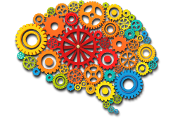 creative-brain 256